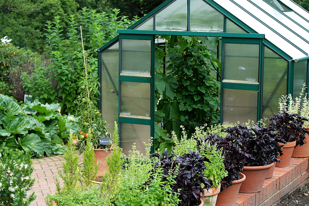 Greenhouse at Wisley
