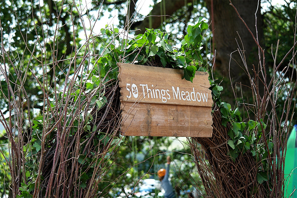 The National Trust's 50 Things Meadow at Camp Bestival