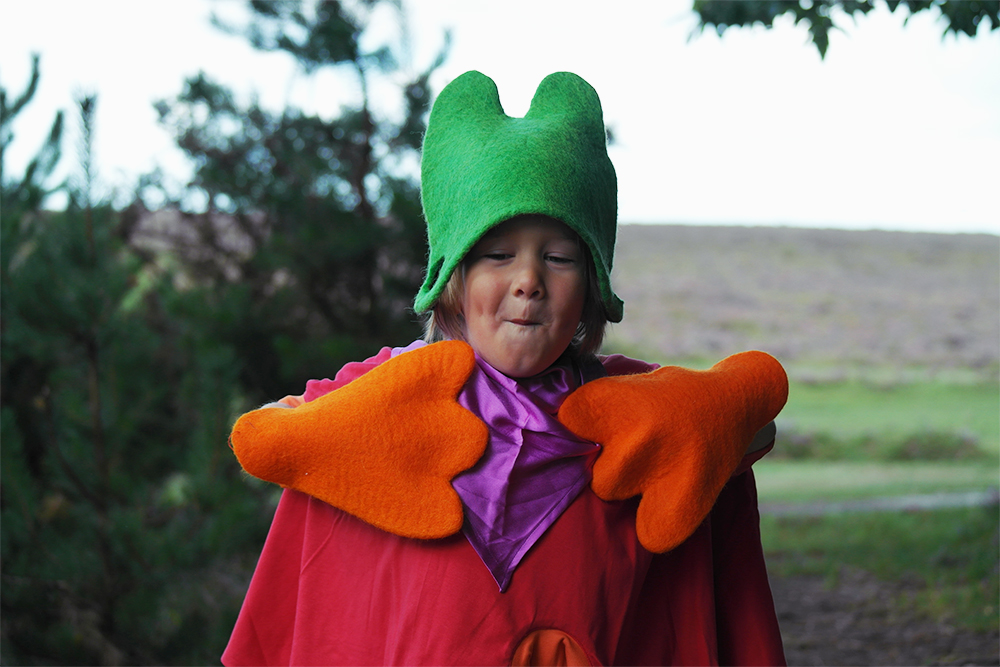 Kid Forest & the Imagination Trunk: Fafu childrens costumes
