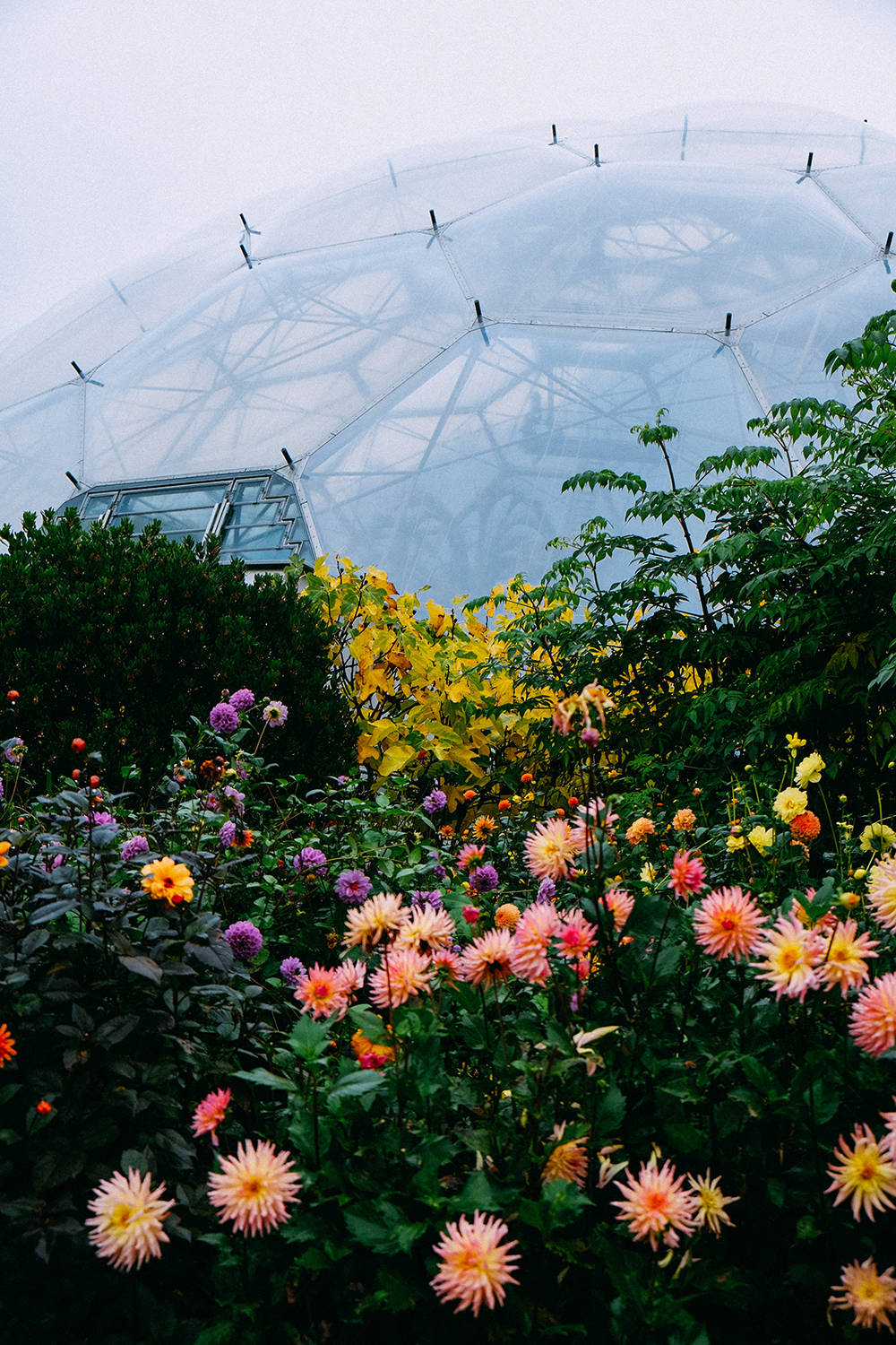 Photos of The Eden Project, Cornwall