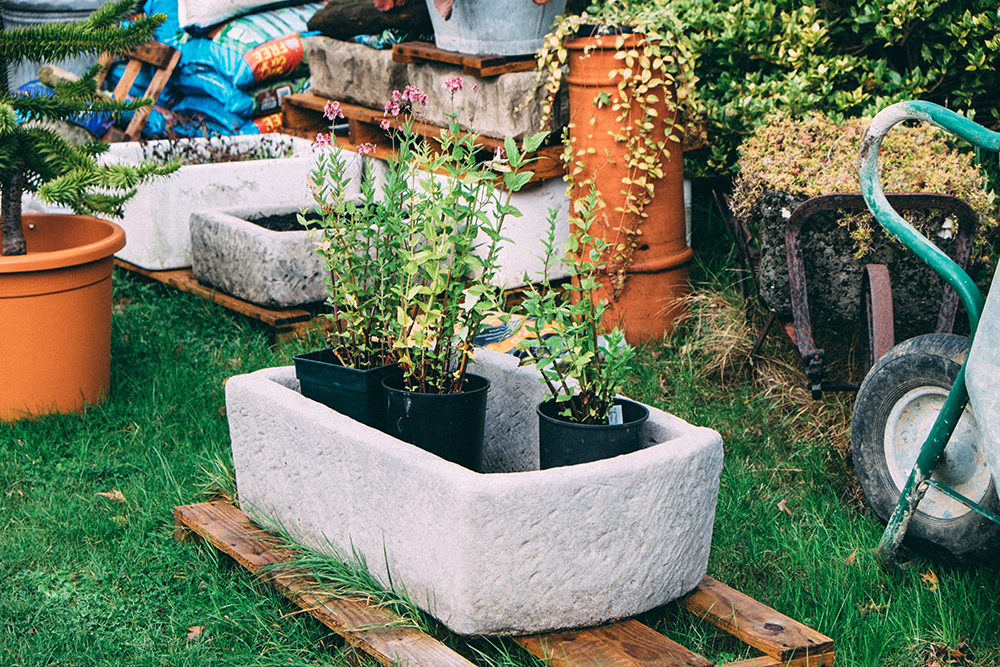 New troughs, brand new that is,made from taking a mould from an original old stone trough and for a fraction of the cost. Paint with yoghurt to help algae age them quicker.
