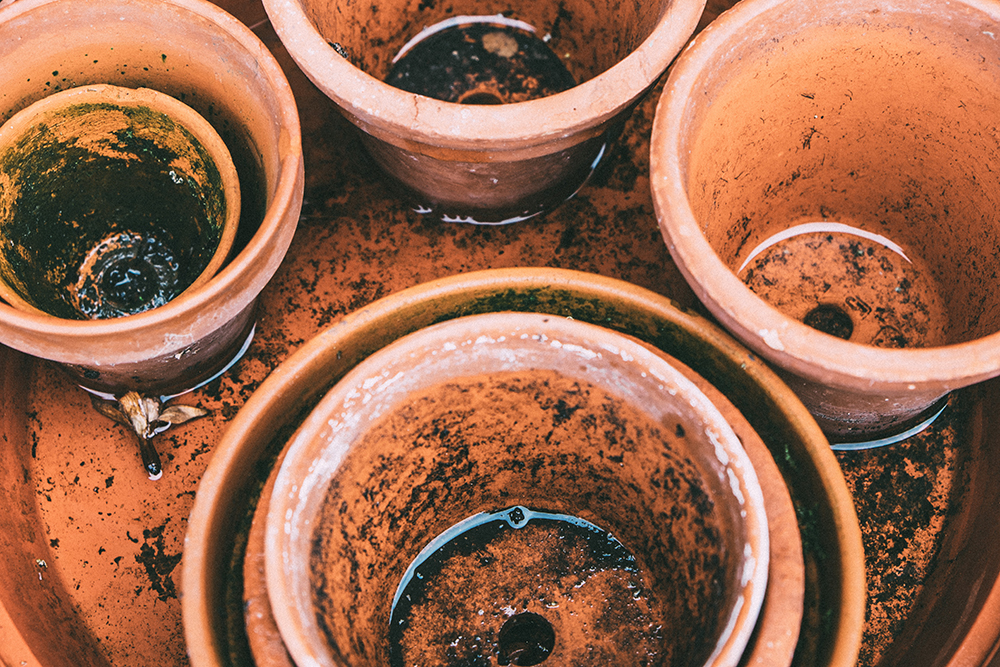 Water in terracotta pots