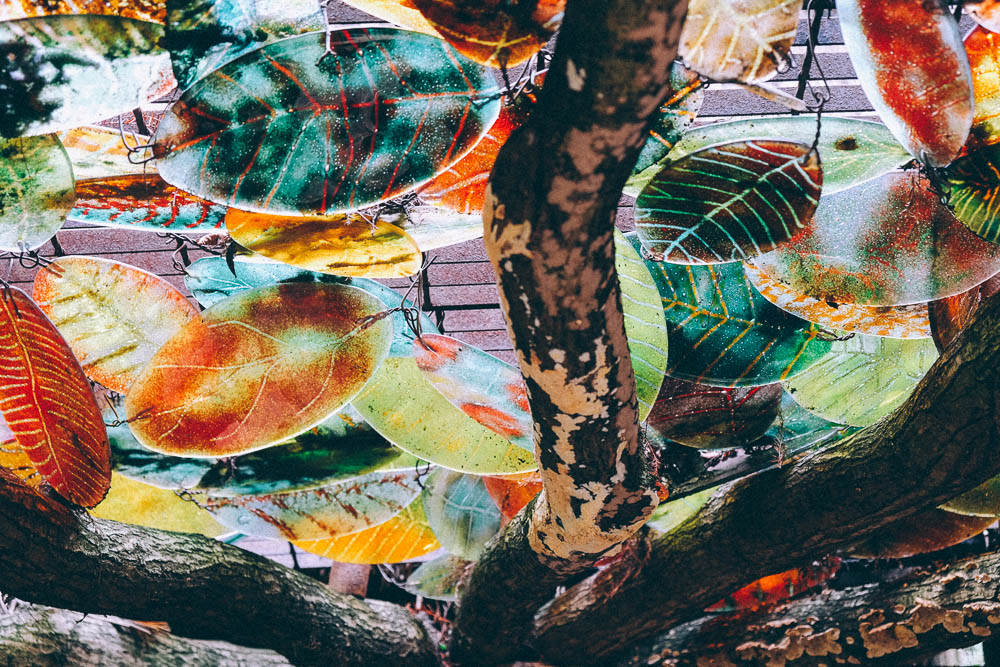 stained glass leaves at Furzey Gardens