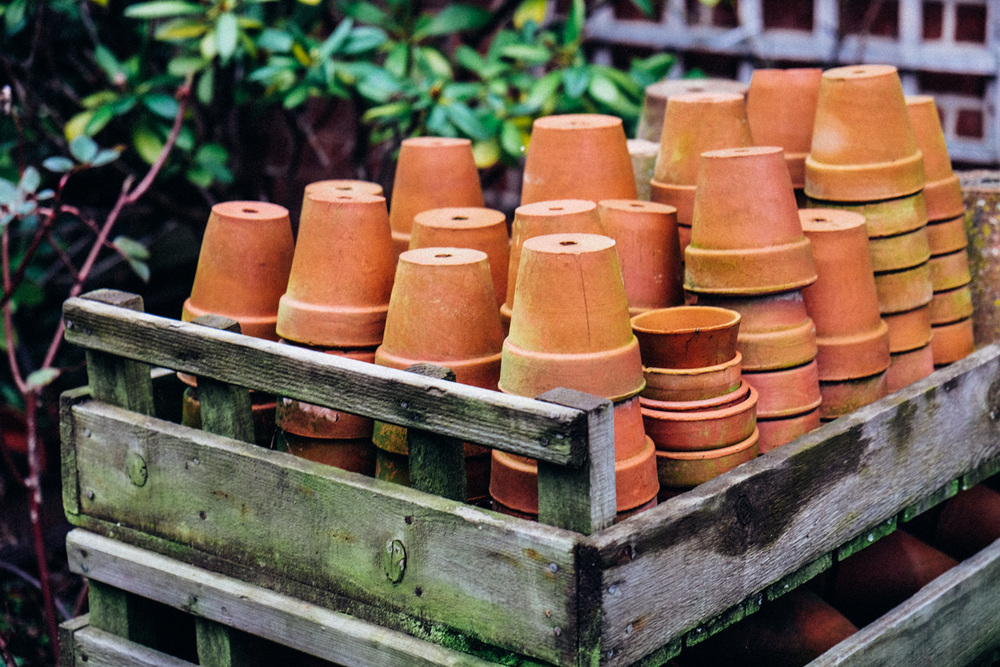 pots, pots and more pots
