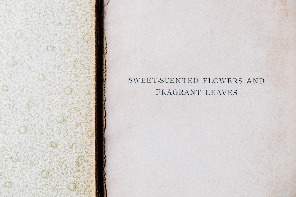 Sweet-scented flowers and fragrant leaves book