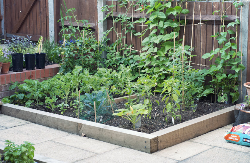 Raised bed c/o Gemma Garner
