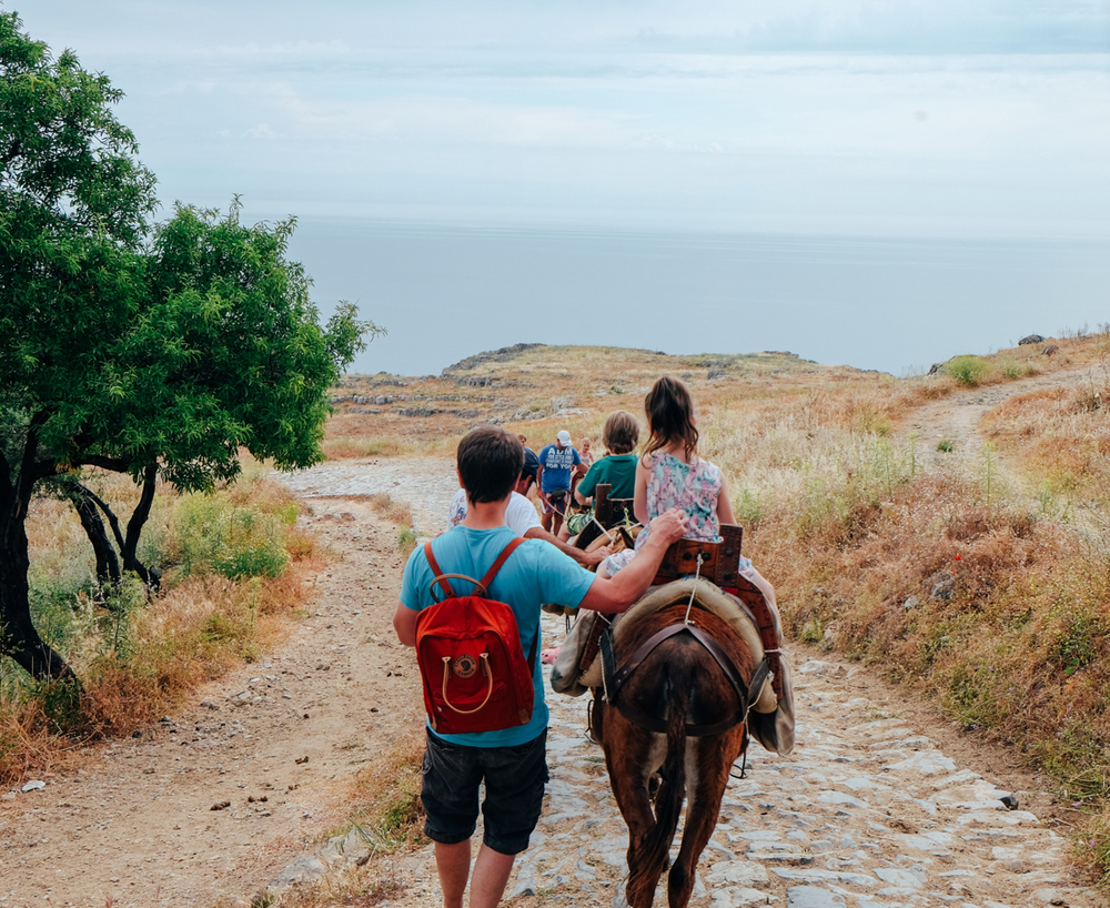 donkey ride to and from the Acropolis of Lindos
