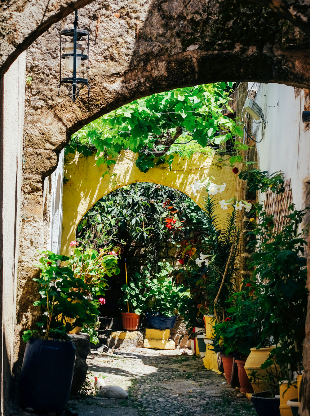 Garden, The Old Town, Rhodes