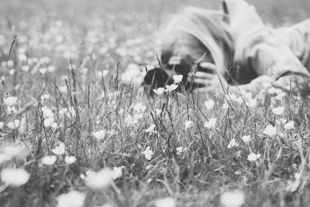 Getting down in the buttercups for the perfect shot