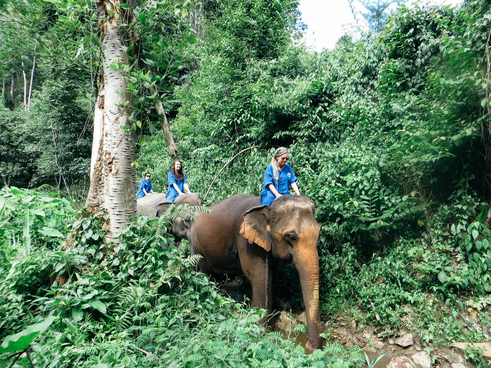Blue Elephant Tours, Thailand