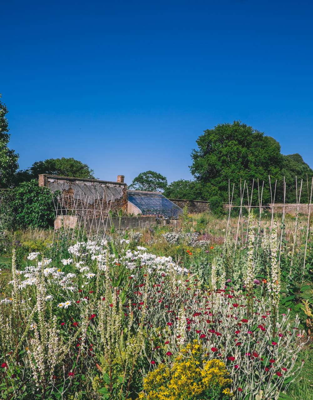 The Walled Garden at Harptree Court