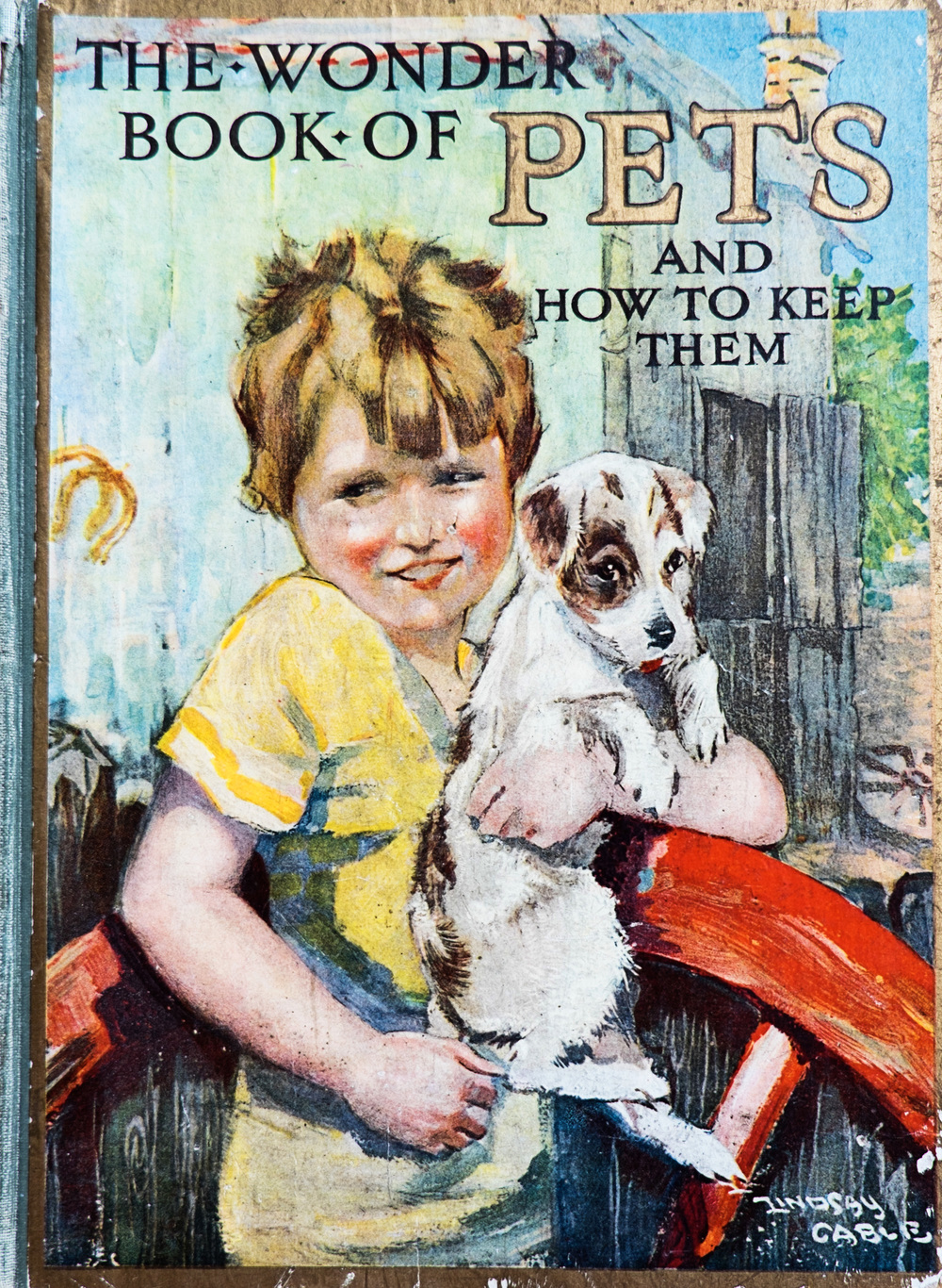 The Wonder Book Of Pets and how to keep them