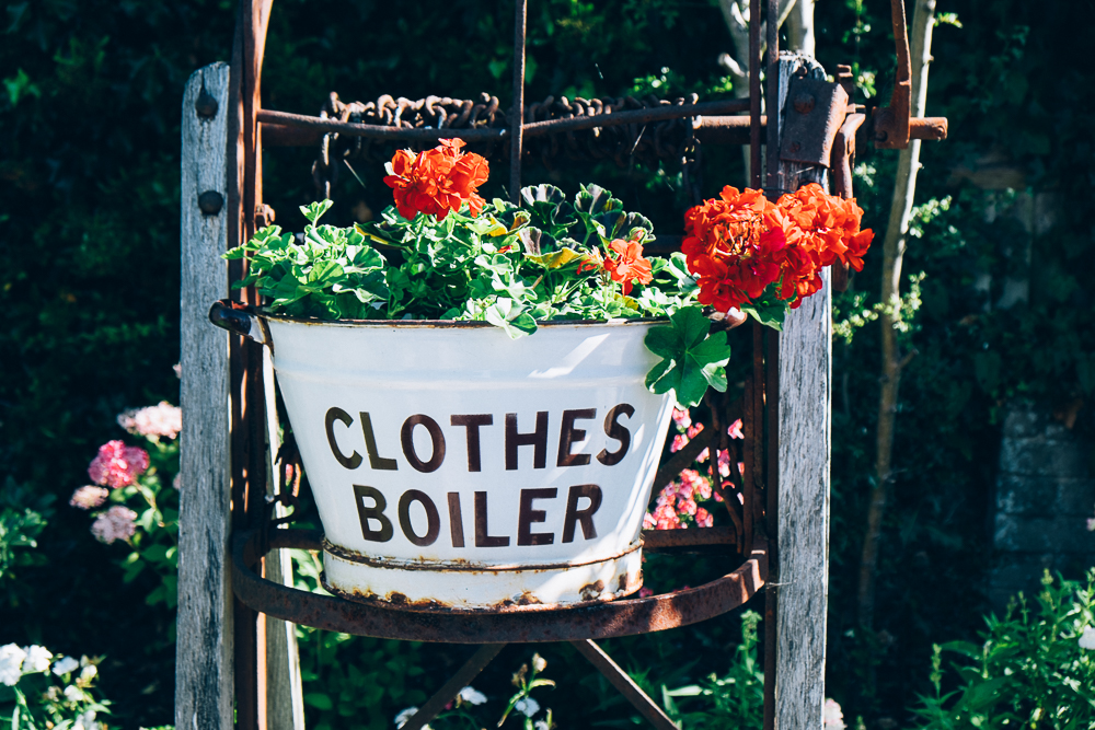 Clothes Boiler planter