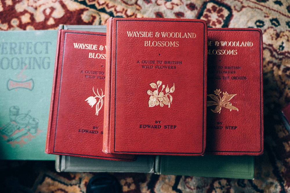 Wayside & Woodland Blossoms books