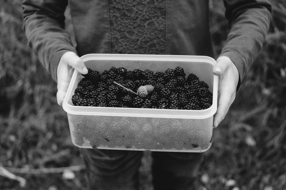Blackberrying