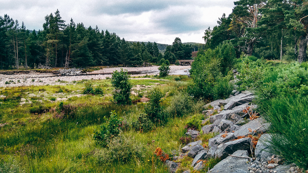 Carrbridge via the Burma Road, Aviemore