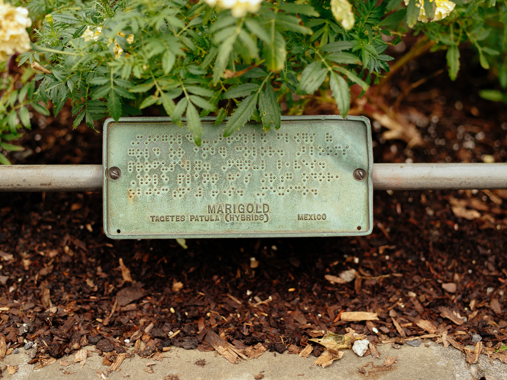 Braille sign at Brooklyn Botanic Garden