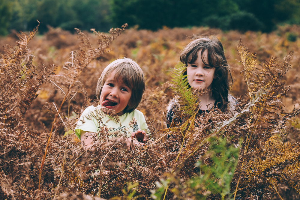 Hide and seek in the ferns