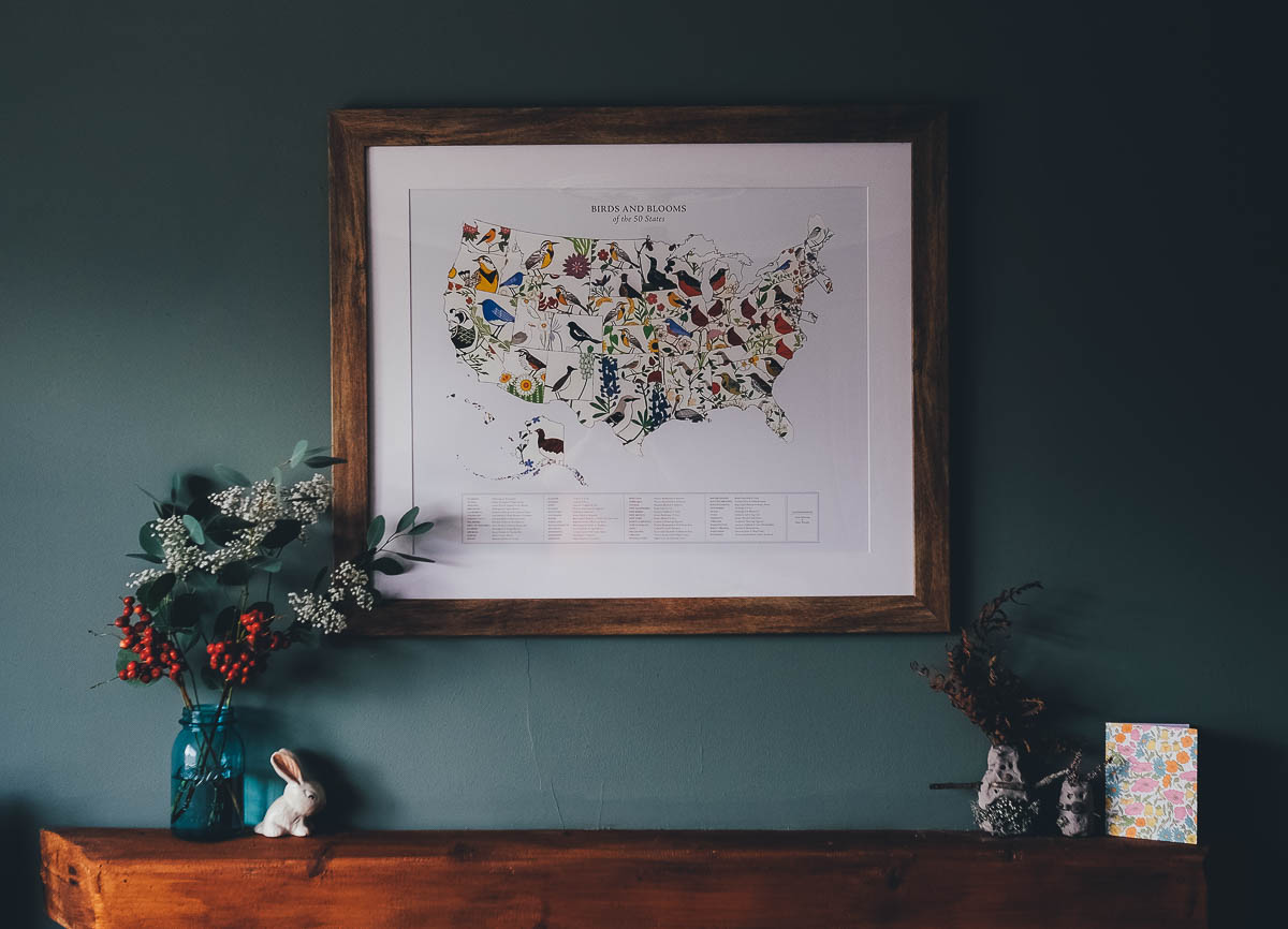 Bird and Blooms of the 50 States framed print