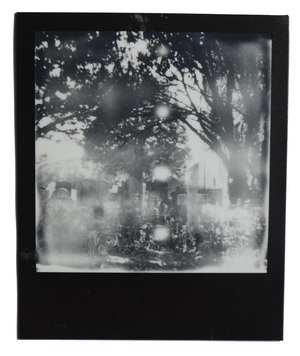 Using a Polaroid 100 Land Camera for the first time