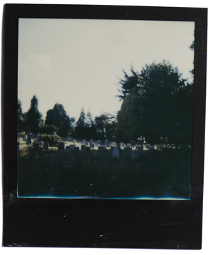 Using a Polaroid 100 Land Camera for the first timeUsing a Polaroid 100 Land Camera for the first time