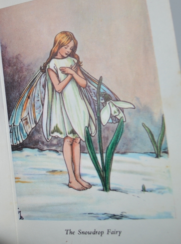 Flower Fairies of the Spring. Blackie Books.