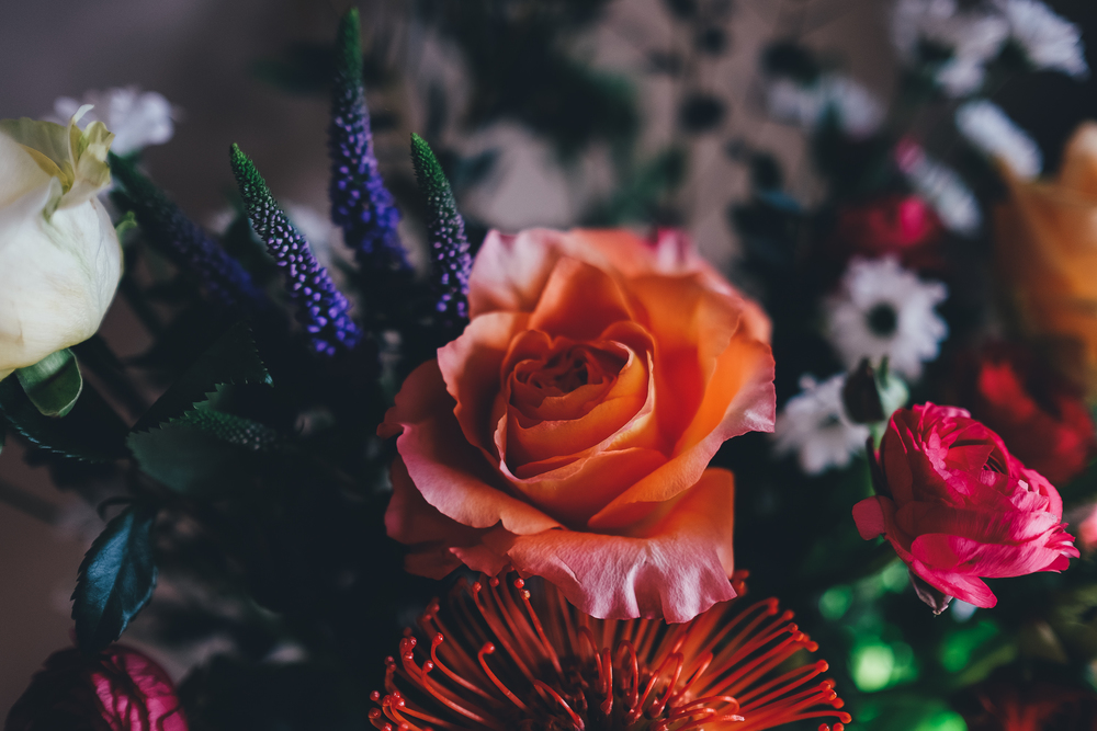 Floral photos from Fable & Folk