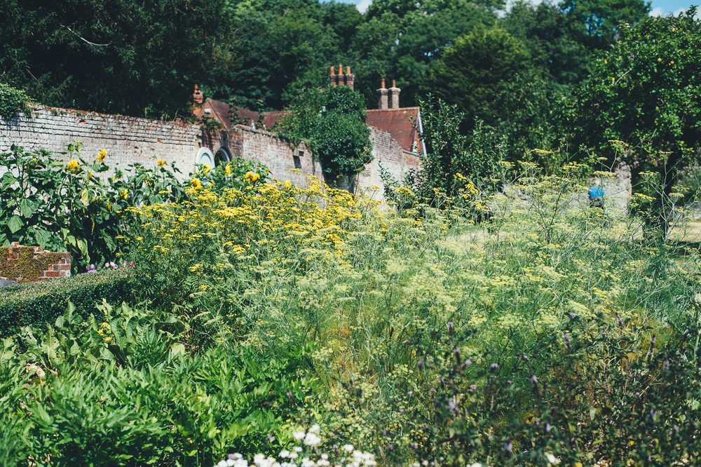 Chawton House Library Garden