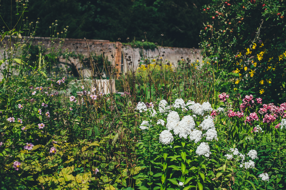 Chawton House Library & Gardens