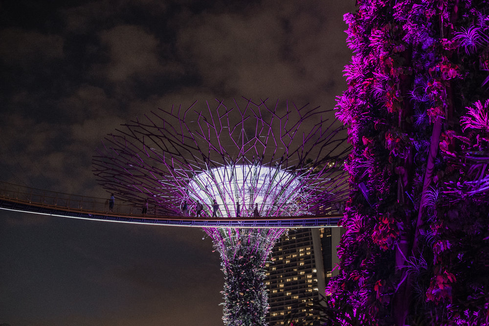 Gardens by the Bay-1-51.jpg