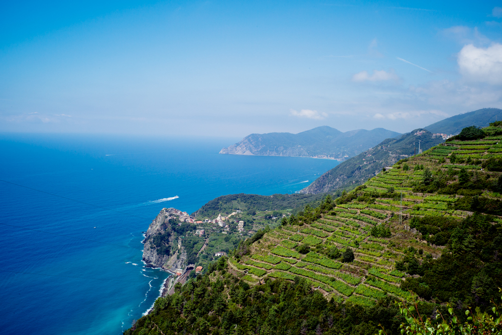 From the trail between Corniglia & Manarola