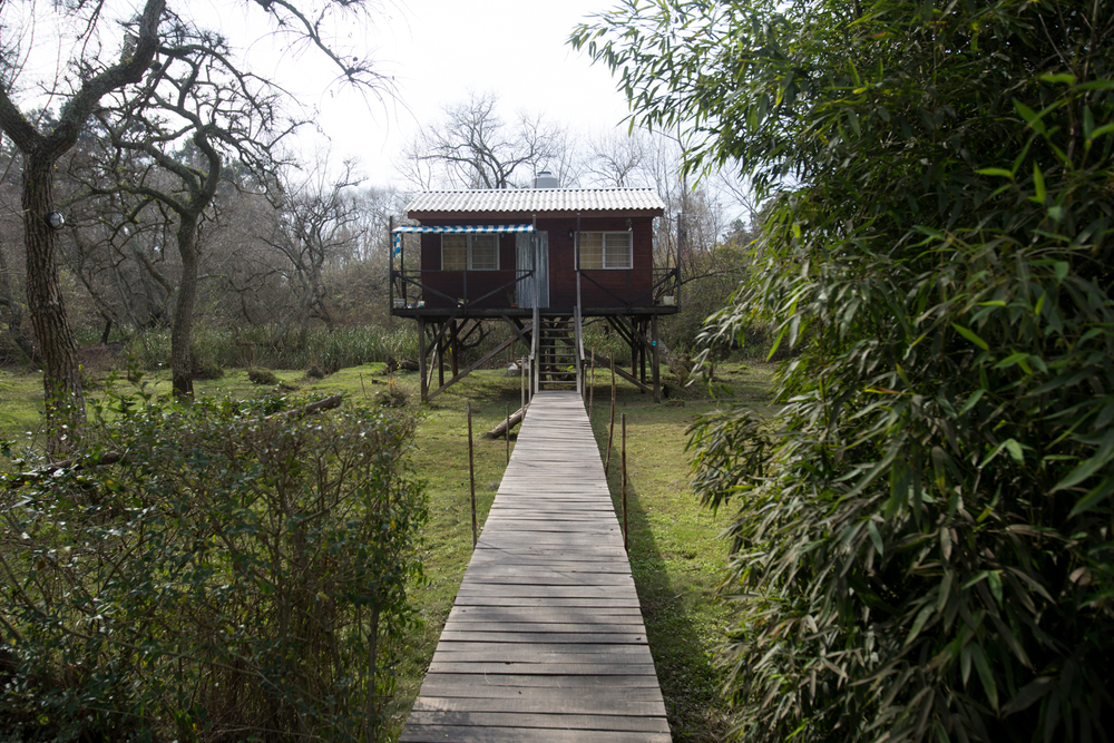 House on stilts – Tres Bocas, Tigre