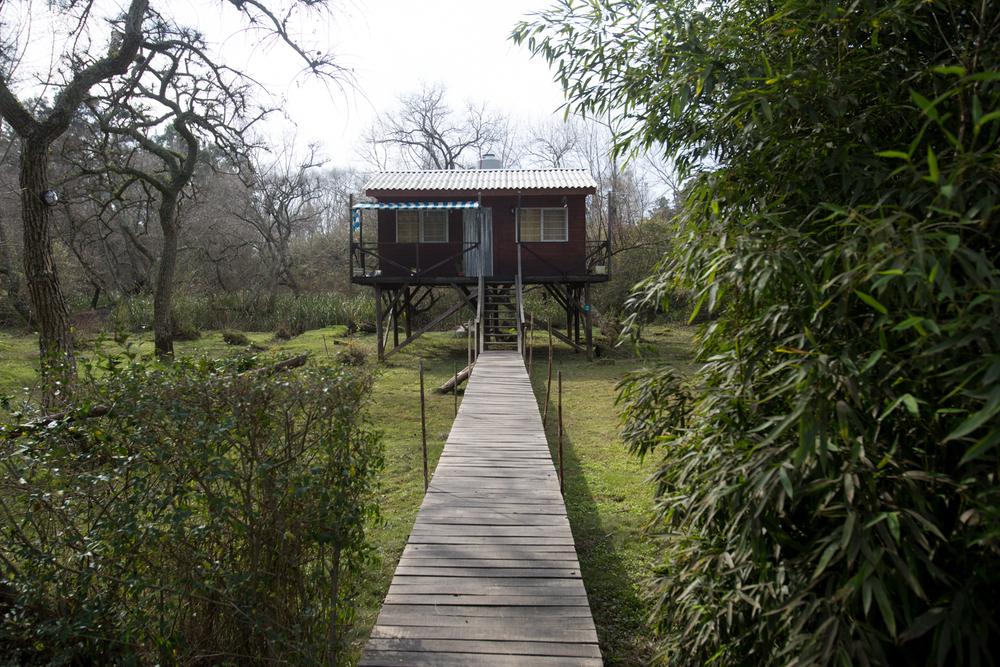 House on stilts –Tres Bocas, Tigre