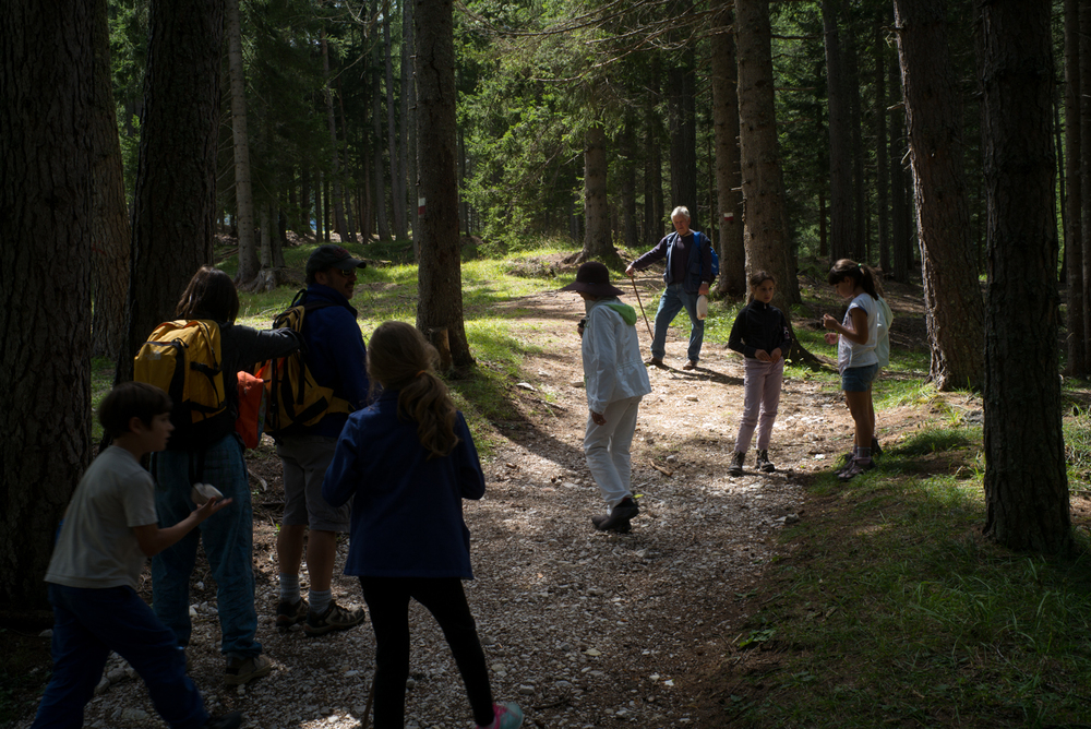 Hiking near Cortina d'Ampezzo