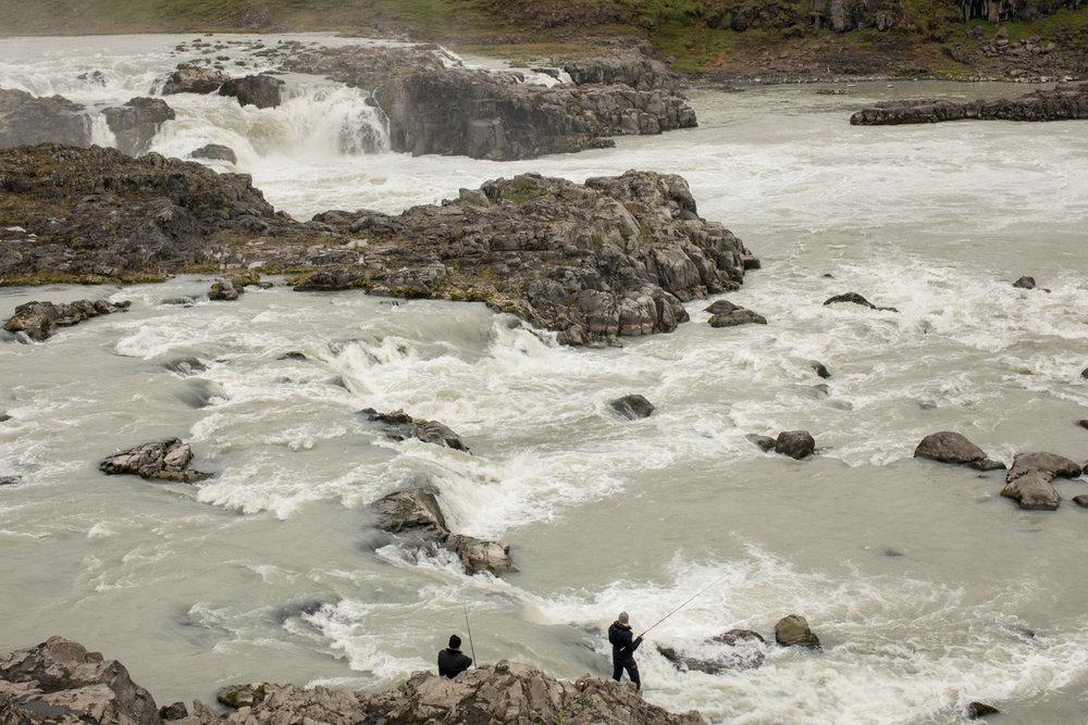 Fishing at the Urriðafoss falls