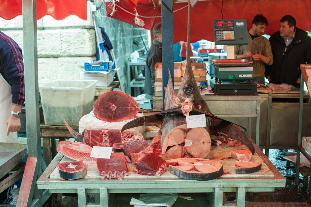 Tuna and Swordfish