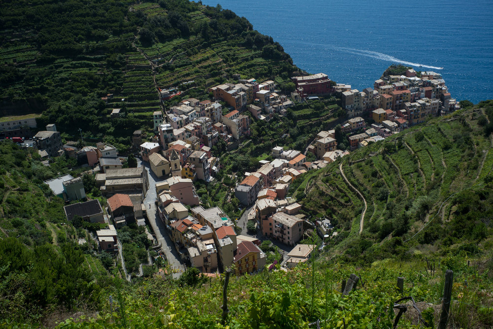 Manarola & surroundings