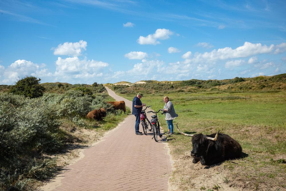 Zuid-Kennemerland (Netherlands)