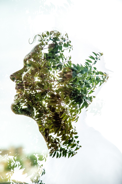plant conc full res01.JPG