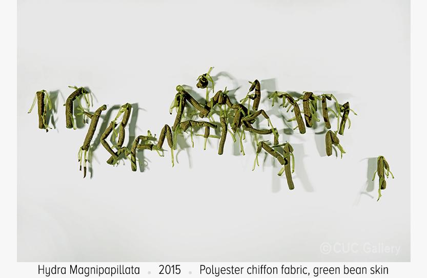 Hydra-Magnipapillata-by-Lai-Dieu-Ha-Gallery-Art-Vietnam.jpg