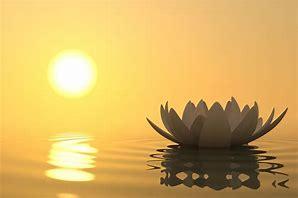 meditation 2.jpg