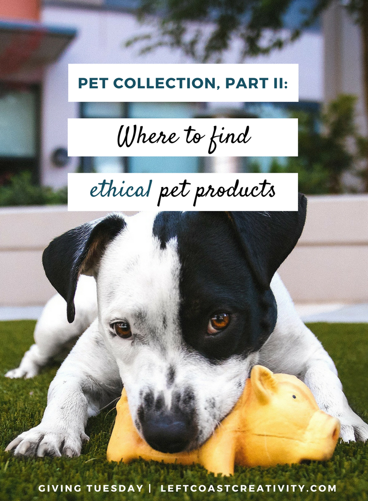 Blog Graphic - Pet Collection Pt. 2 (1).png