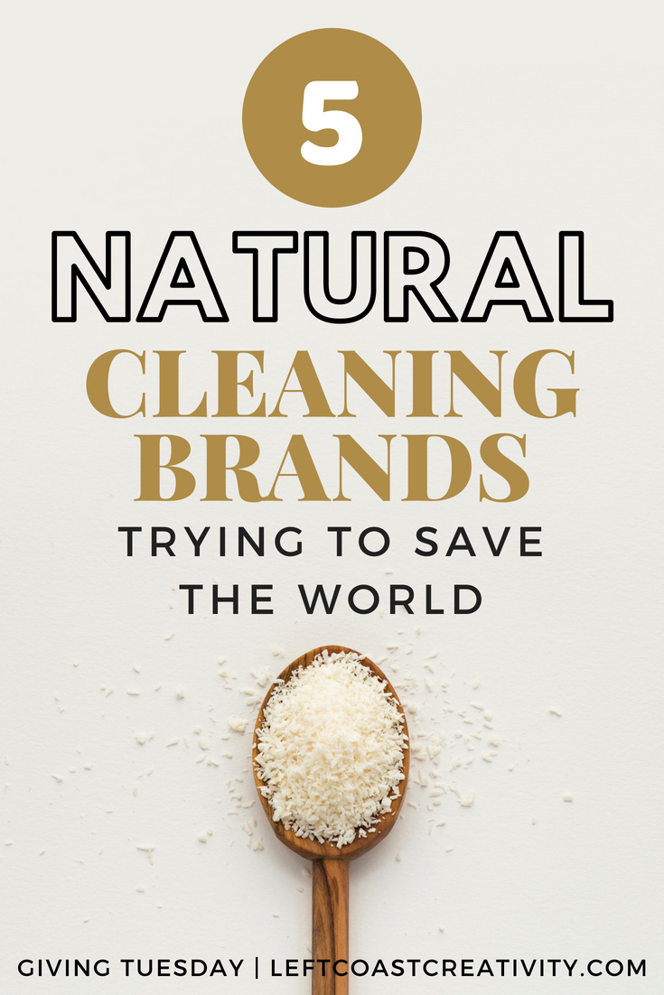 G.T. Pin Natural Cleaning Products (1).jpg