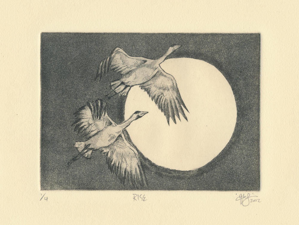 Rise.Aquatint, 2012.