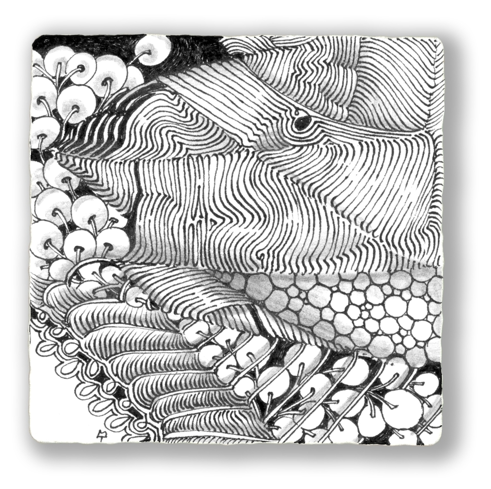 Zentangle image D 12 07.JPG