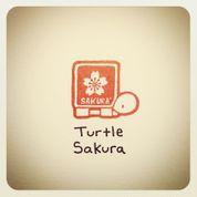 Turtle_Sakura.jpg