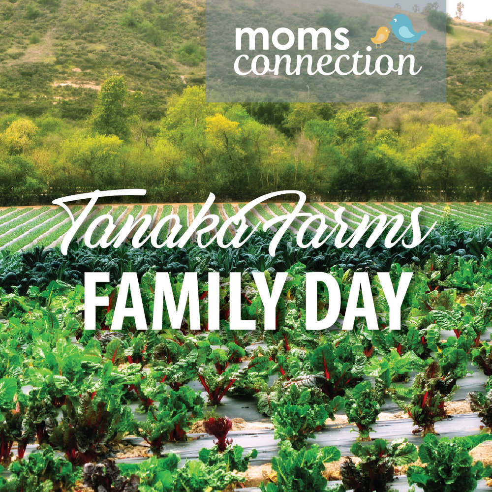 FAMILY DAY - MOMS CONNECTION