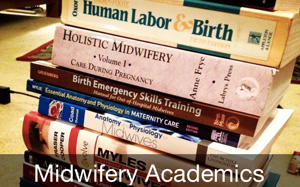 Midwifery academics