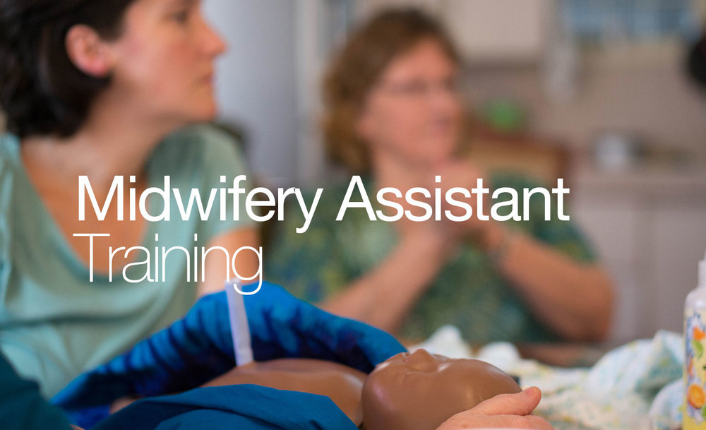 how to become a midwife assistant