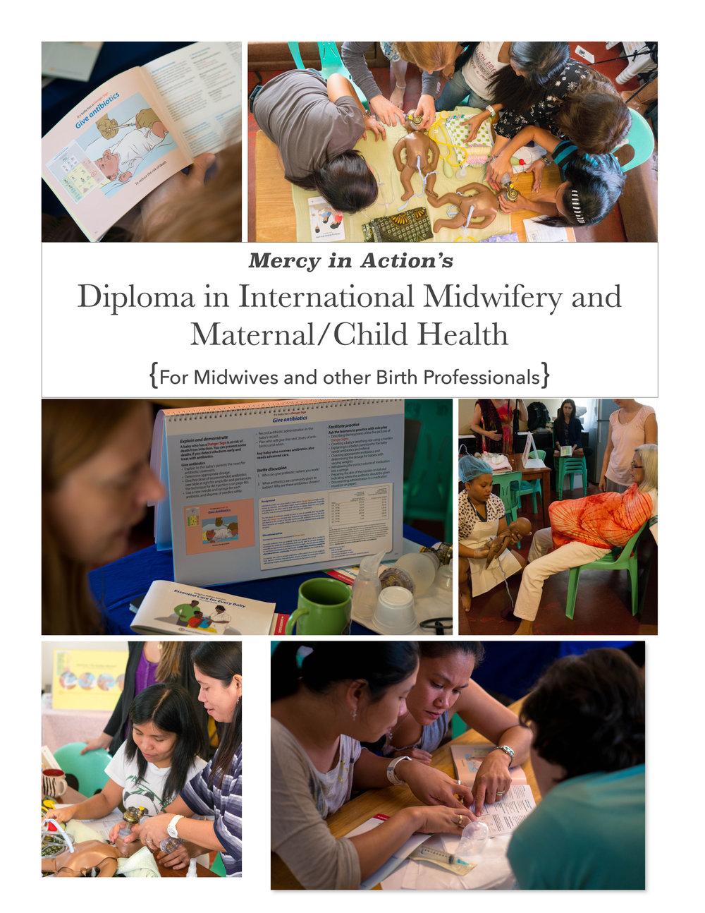 Diploma Program online cover.jpg